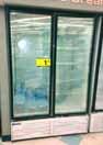 22-2-door-freezer.jpeg